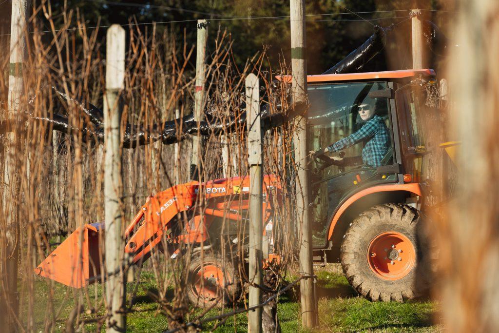 Alderlea Vineyards - Tractor Powered by Recycled Cooking Oil - Julie Powell